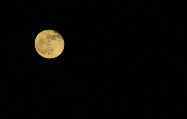 harvest moon, yello moon